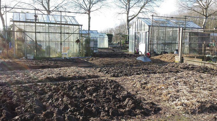 Wateroverlast Tuin Kleigrond : Vette klei; ken je grond pokon groen doet je goed